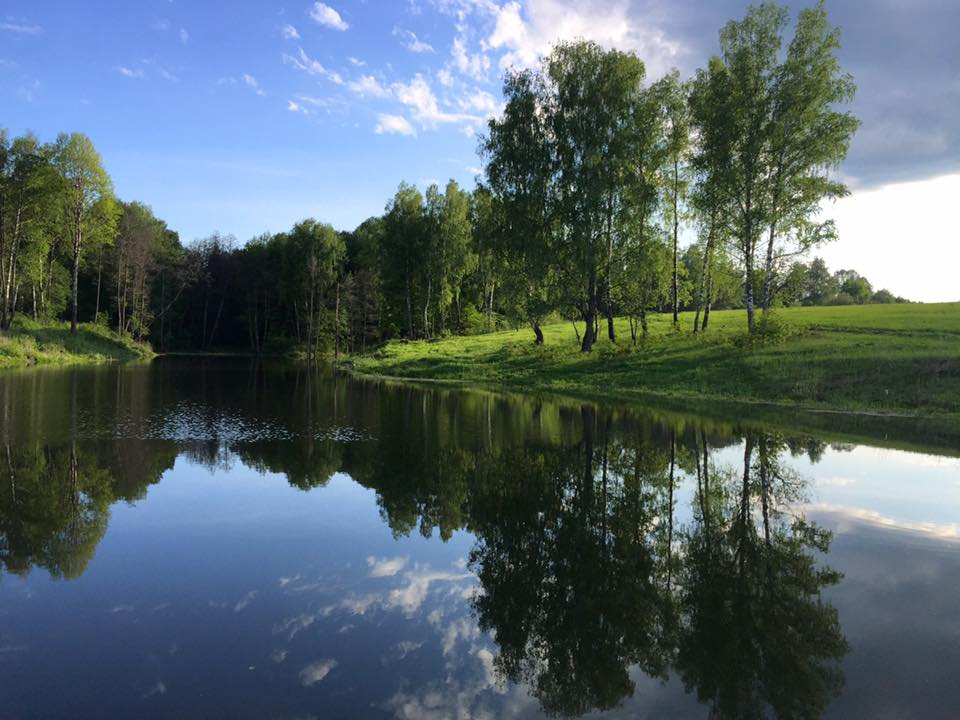 красивый пруд