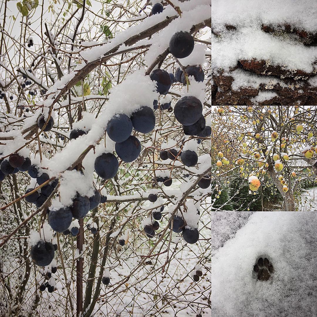 Зимняя Матрёна в деревне Дорохино